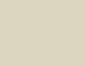 sandpiper-beige-1